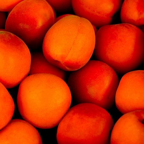abricot-les-cols-gourmands